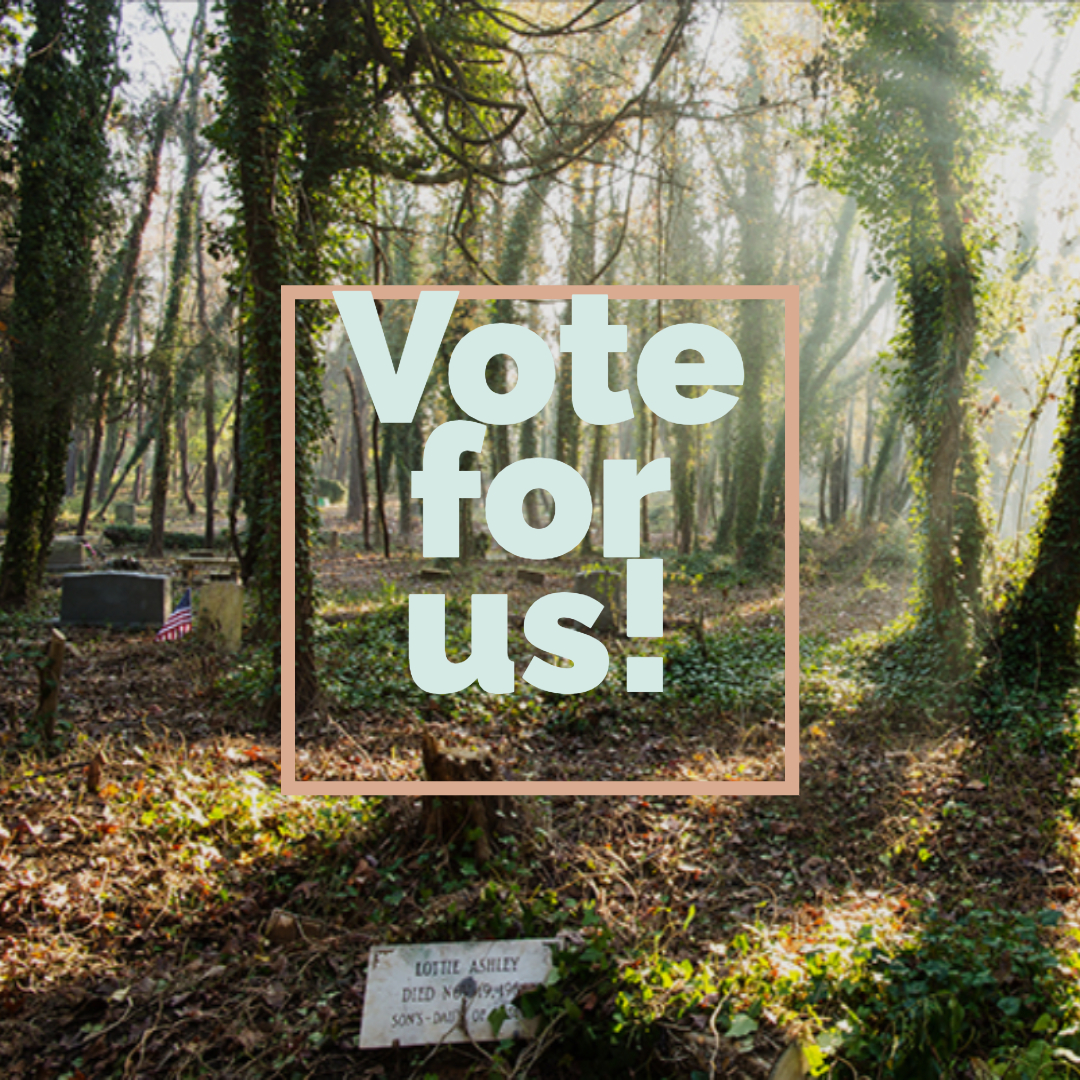FOEE_Vote_Day_1_IG
